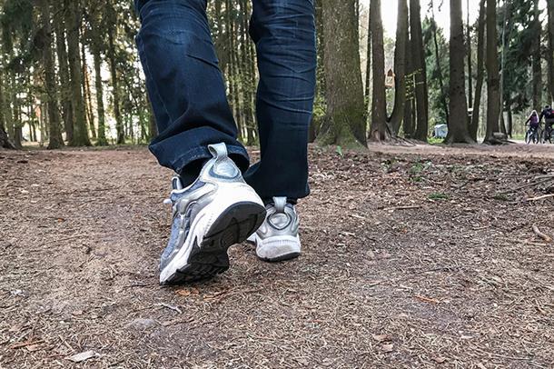 Illustrasjonsbilde av bein i skogen
